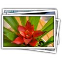 LightTable for mac