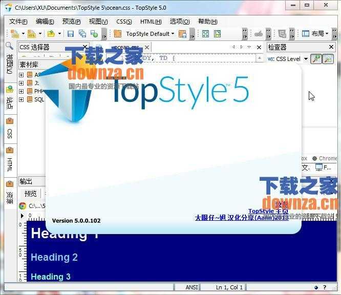 TopStyle Pro(CSS设计利器)