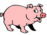 生肖猪年前该怎样完美的收尾