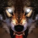 狼的生活2014