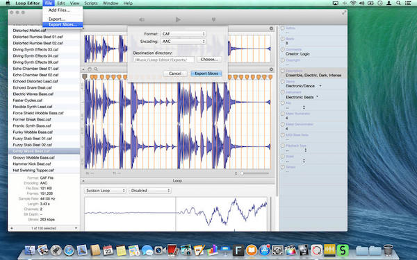 Loop Editor for mac截图