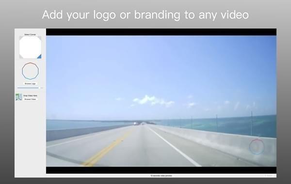 Logo on Video截图