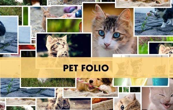 Pet Folio